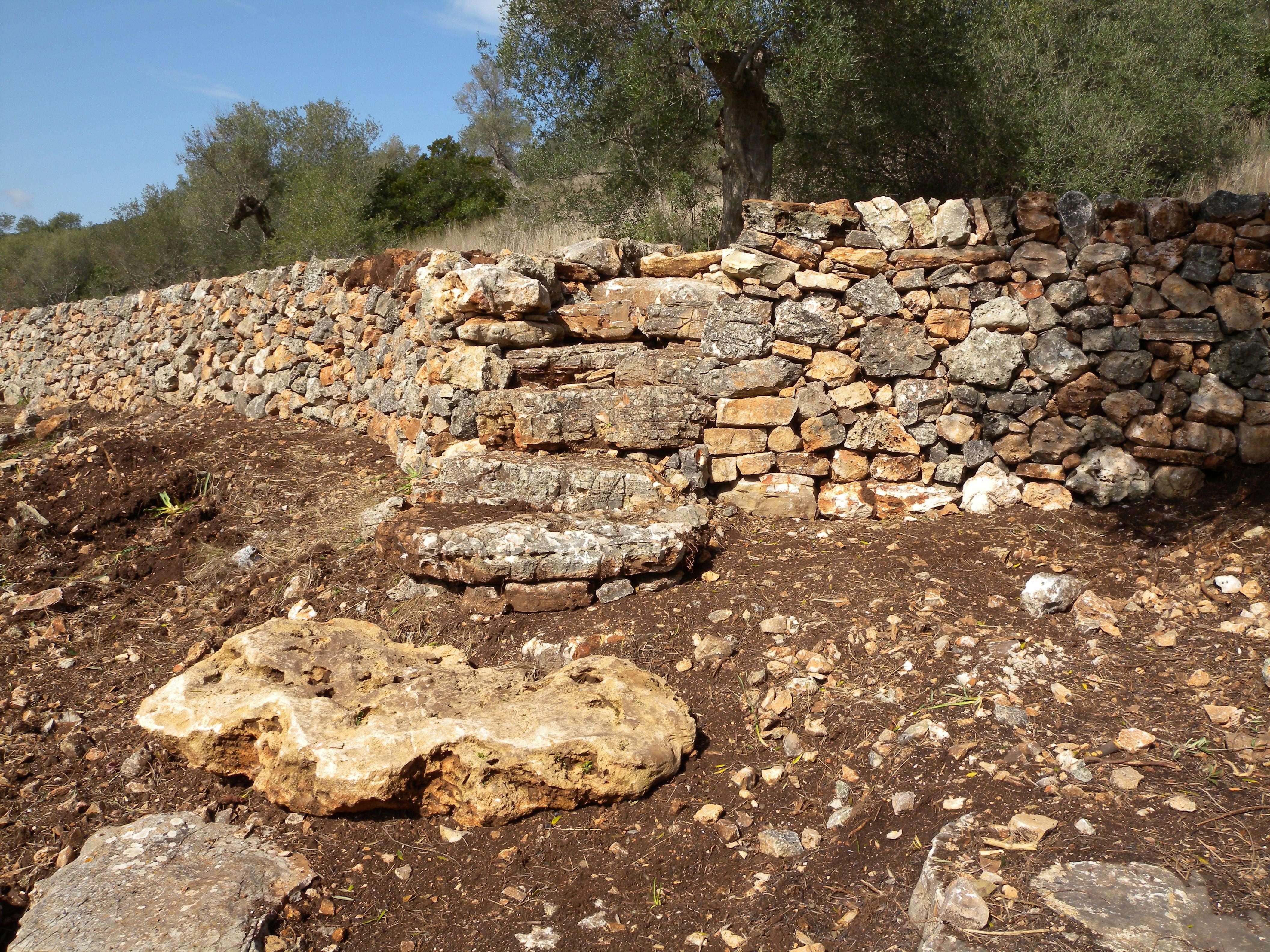 muro in pietra e vegetazione