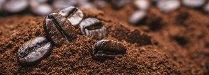 varietà caffè