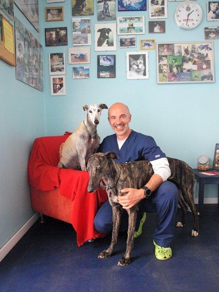 veterinario con due cani