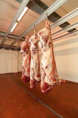 parti di bovino in vendita