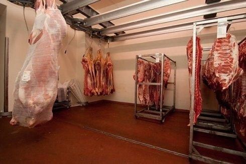area delle carni bovine
