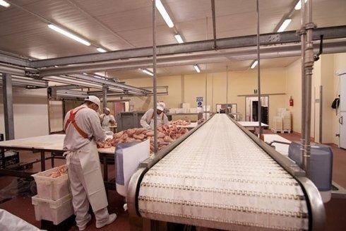 lavorazione della carne di pollo