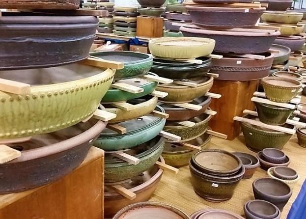 vivaio valpescara vasi per bonsai