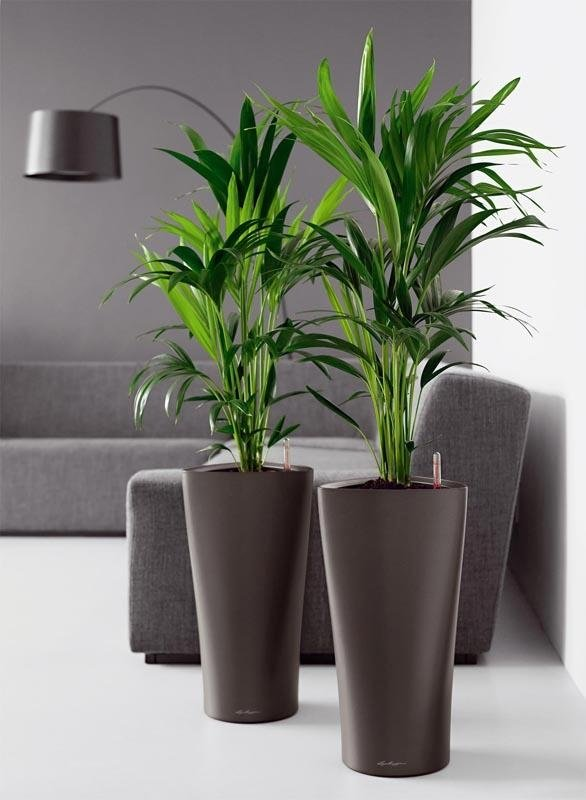 Vendita vasi pescara valpescara garden - Vasi da interno design ...