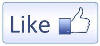 pagina facebook vivai mazzaglia