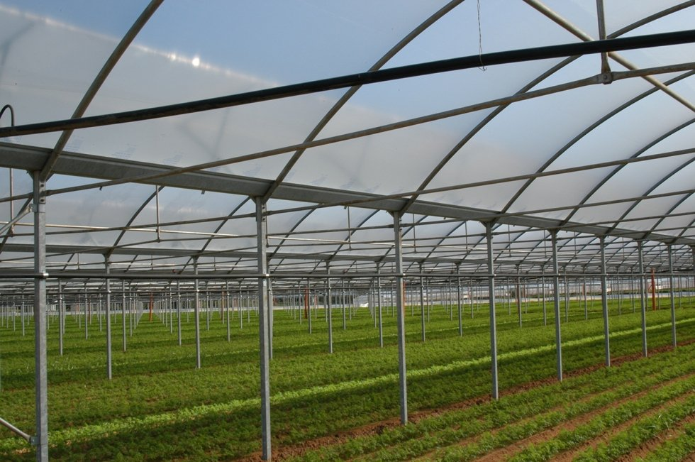 realizzazione struttura serra