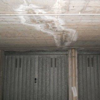 infiltrazioni acqua dal tetto