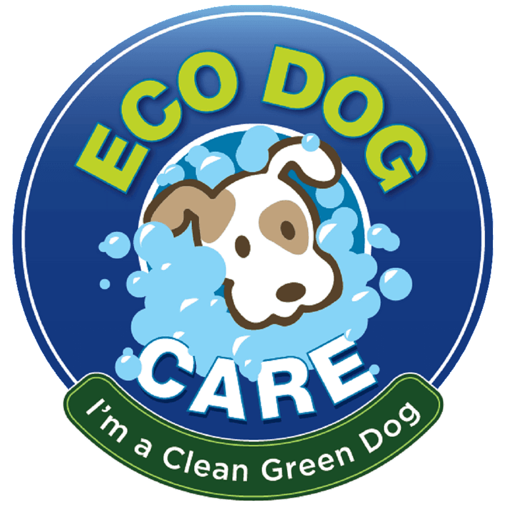 Awarding Winning Cage Free Dog Care In Mid City Los Angeles