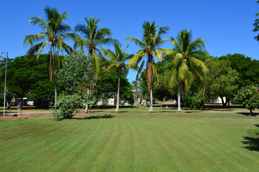 View of a well maintained lawn