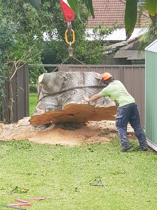 man removing stump with crane