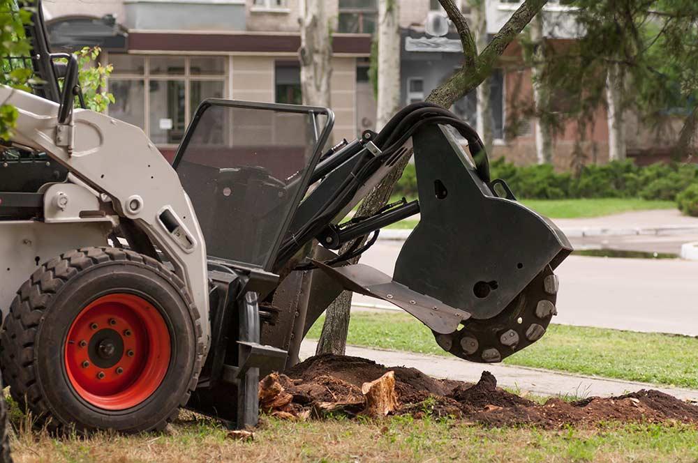 machine grinding a tree stump