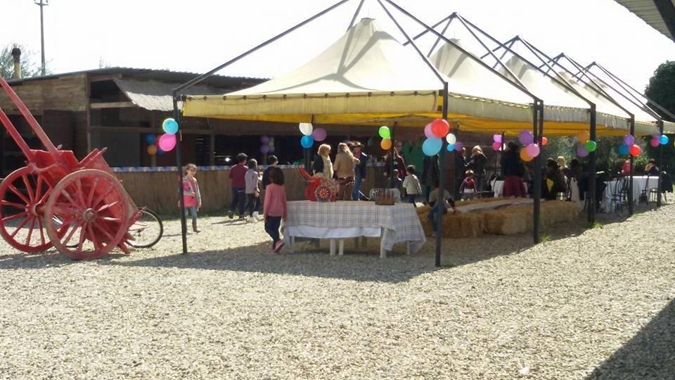 feste per bambini con i cavalli