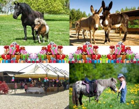 feste di compleanno per bambini con i cavalli