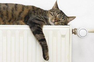 Contabilizzazione del calore con sistema Perry