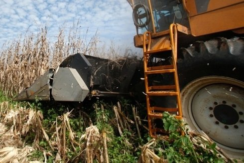 gomme per mezzi agricoli