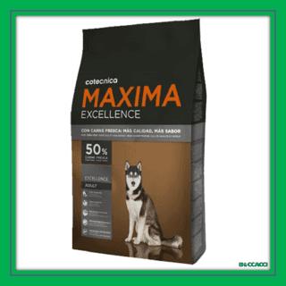 maxima excellence