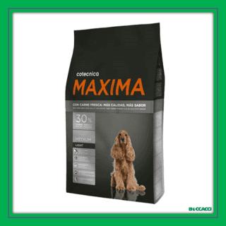 maxima medium light