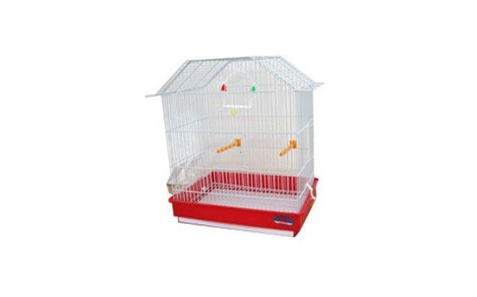 Prodotti per uccelli