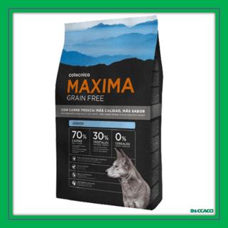 maxima grain free junior