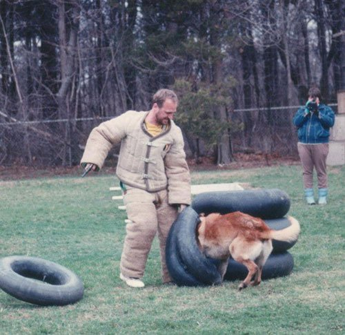 Dog Training Suffolk County, NY