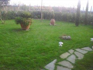 Manutenzione ordinaria giardino
