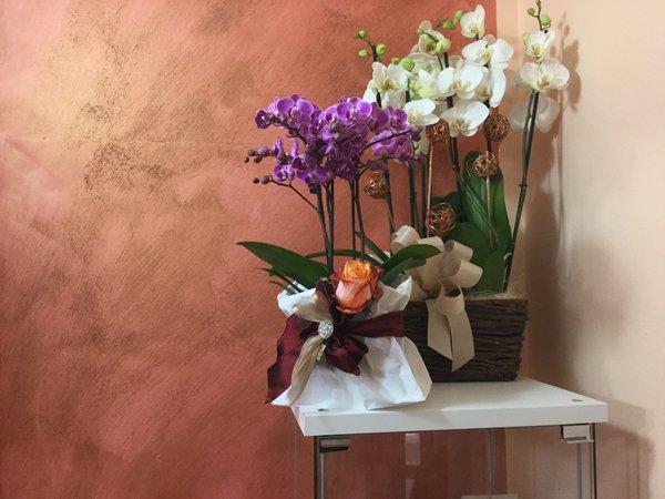 vasi di orchidee viola e bianche appoggiate su un tavolo