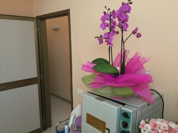 vaso di orchidee sopra un macchinario