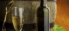 produzione vino, acquavite,azienda vinicola