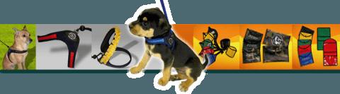 Pettorine per cani guinzagli portalicenze