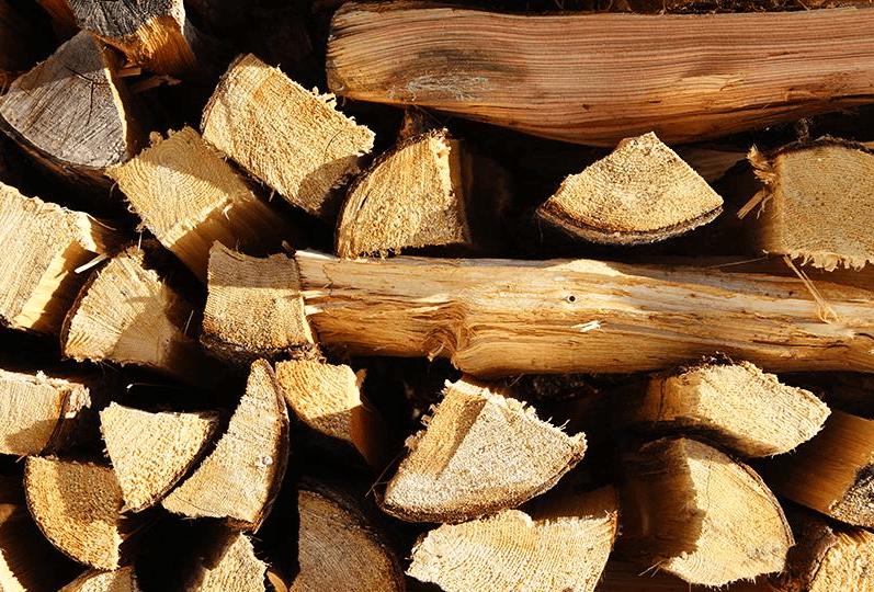 vendita legna padova