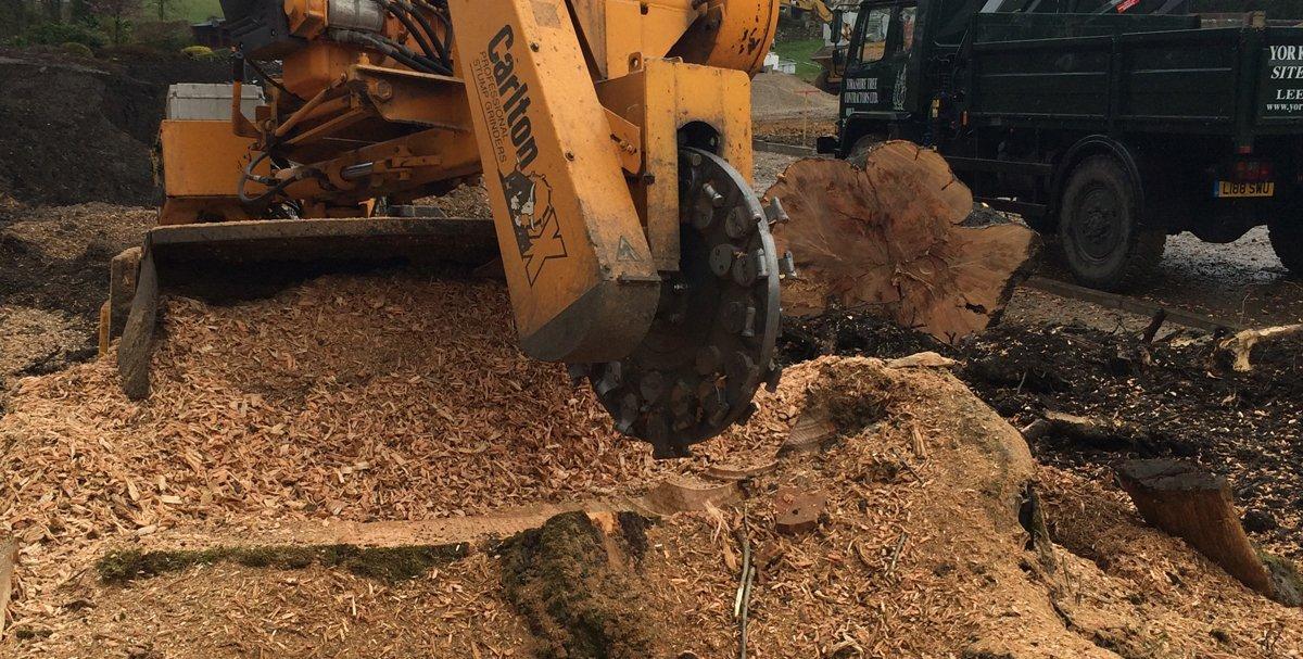 Carlton machine for stump removal