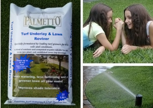 palmetto girls sprinkler collage