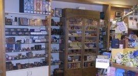Tacconi Leda i Puffi, Arezzo (AR), vendita agende e quaderni
