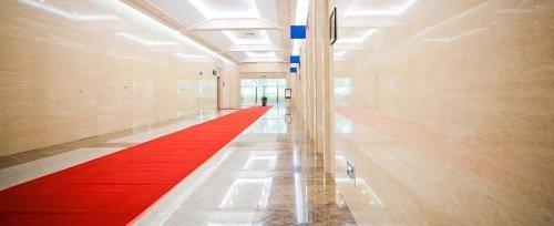 un lungo  corridoio con un tappeto rosso