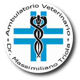 http://www.veterinariotriola.com/