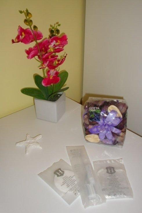 Una pianta e una scatola di frutta secca