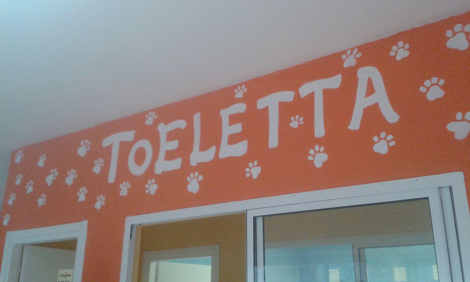 Un muro dipinto di color arancione con disegni delle zampe e scritto Toeletta