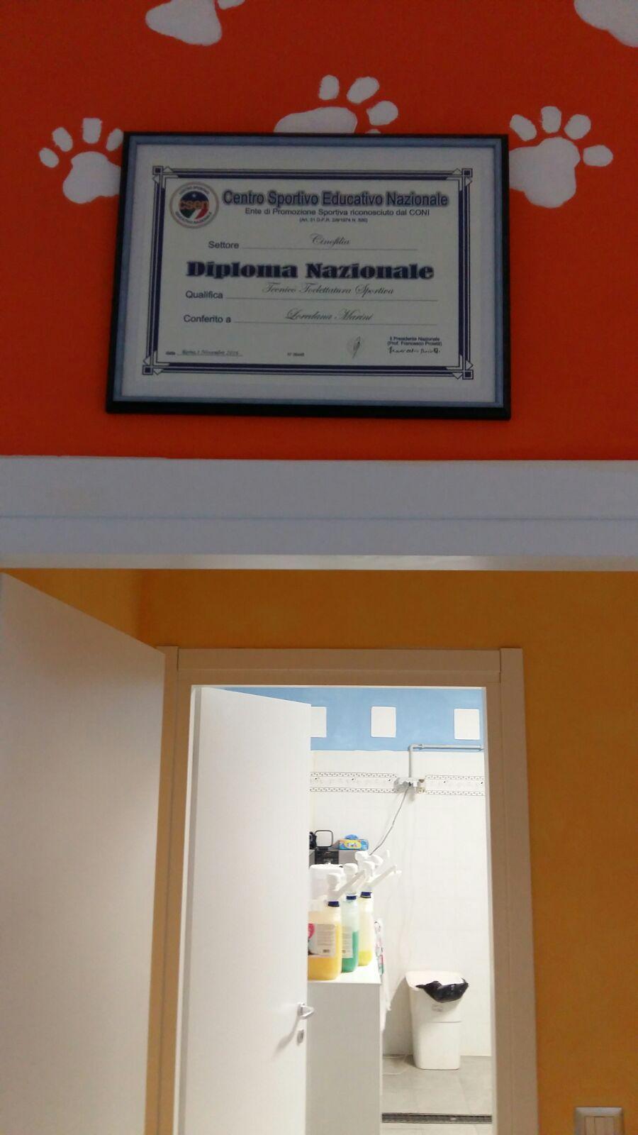 Un muro dipinto in arancione con un'attestazione appesa