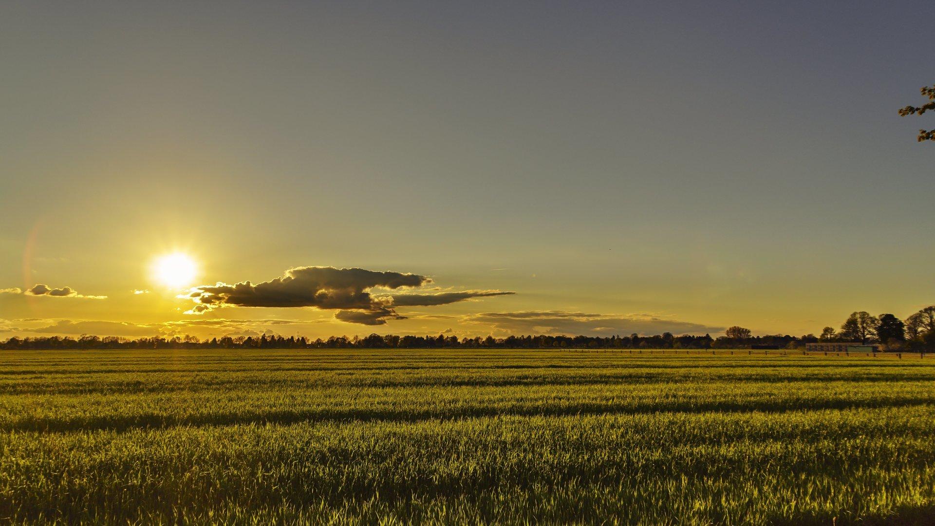 vista ddi un tramonto