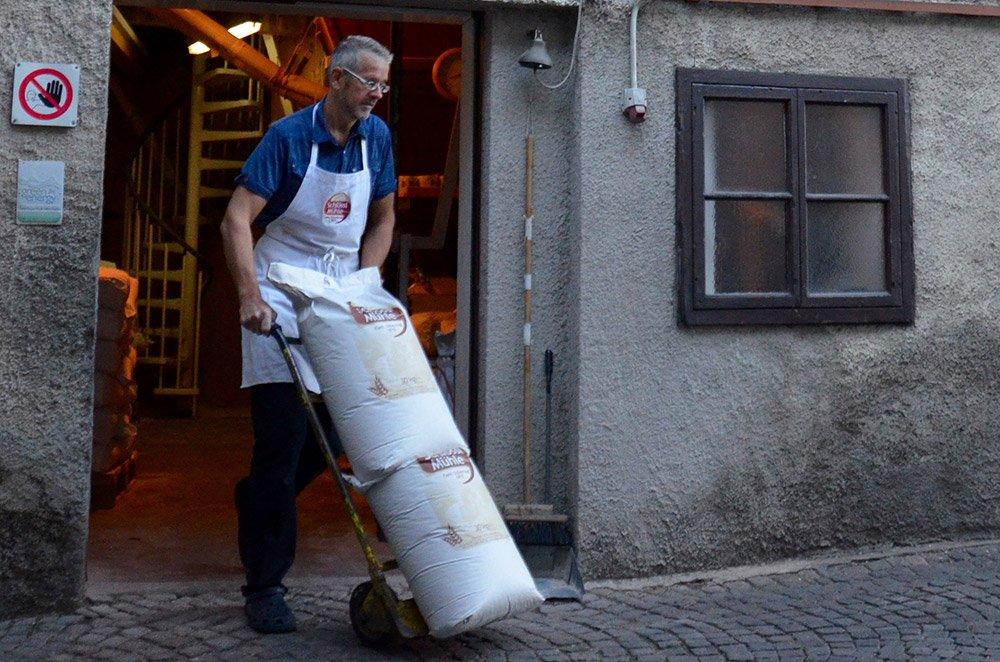addetto trasporta due sacchi di mangime fuori dal laboratorio