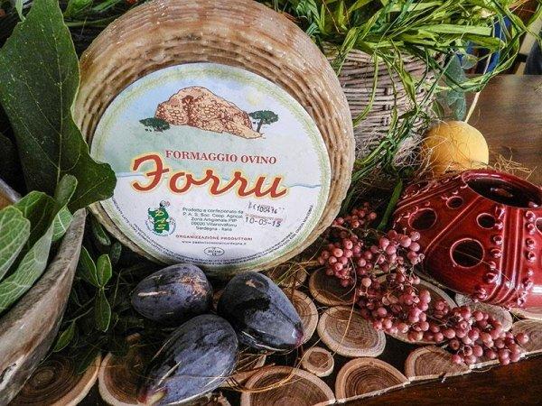 Formaggio Ovino Sardo - Forru