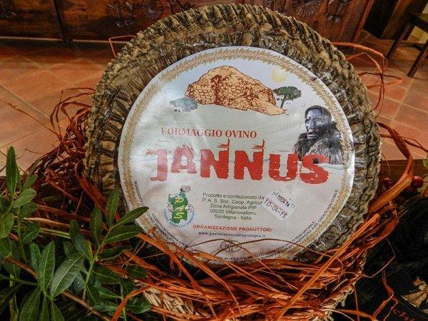Pecorino Sardo - Jannus