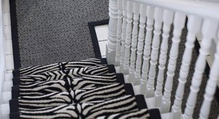 zebra printed carpet