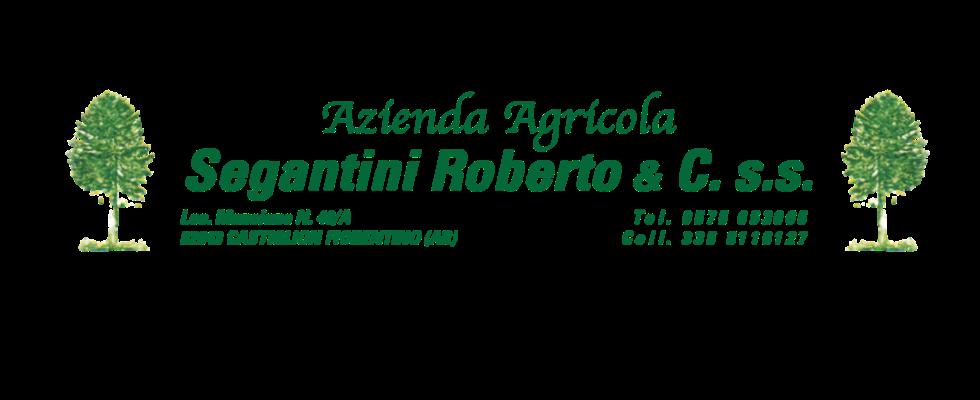 azienda agricola a Castiglion Fiorentino Arezzo