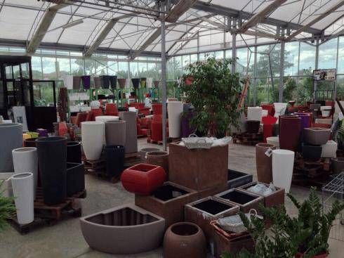 Terracotta and plastic pots