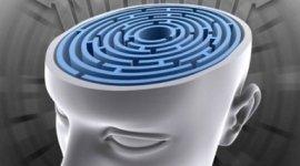 neuropsichiatria