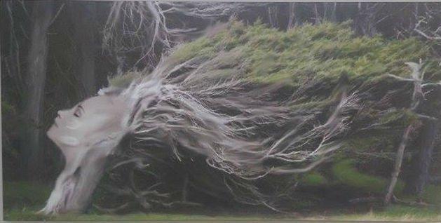 Foto di un albero