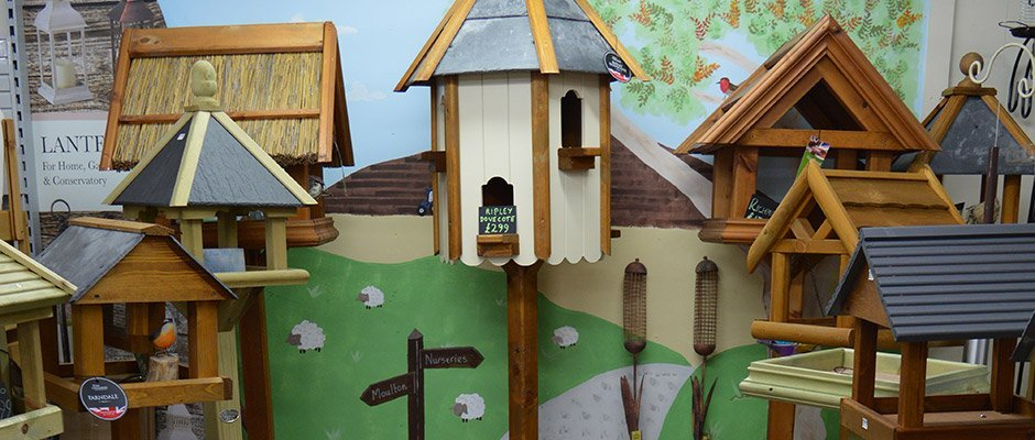 Bird Care 1