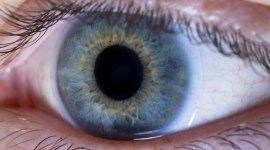 patologie alla retina