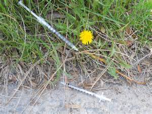 syringe or needle in grass